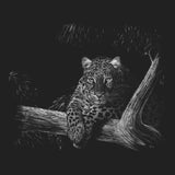 Leopard on Black - Women's Fitted T-Shirt