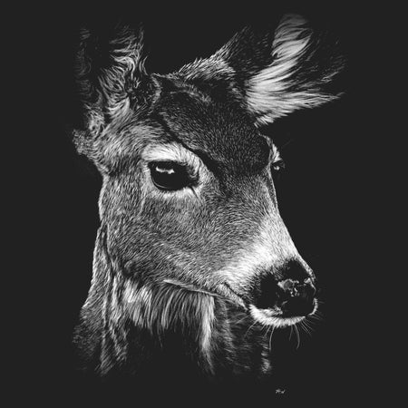 Mule Doe on Black - Women's Fitted T-Shirt