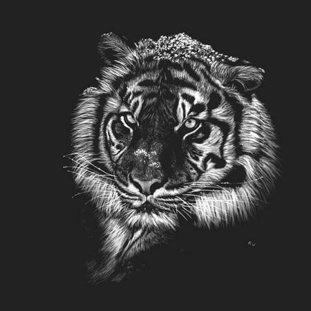 Tiger with Snow on Black - Adult Unisex T-Shirt