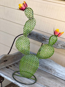 Wire Prickly Pear Cactus