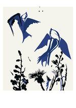 Mini Stilleben Print - Birds