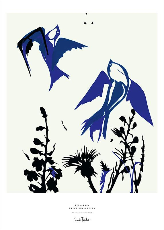 Stilleben-Print-Collection-Sarah-Becker-Birds-Print-Poster-Plakat