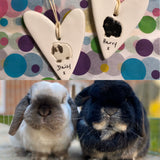 Personalised Rabbit heart