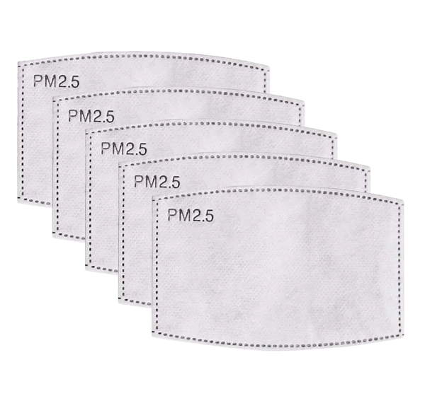 PM2.5 Filter 5-Pack