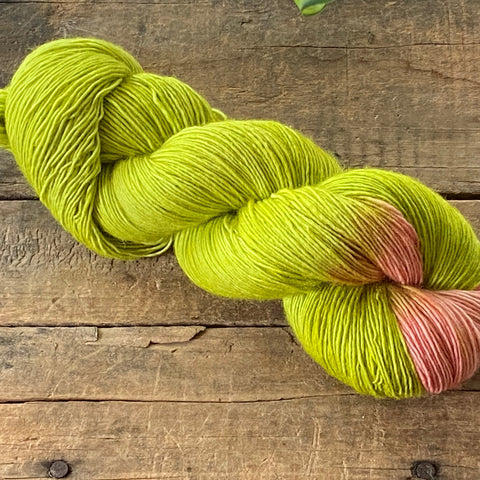 Watermelon Radish Merino Solo Light