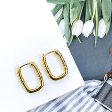 Load image into Gallery viewer, Solid Loop Gold Earrings