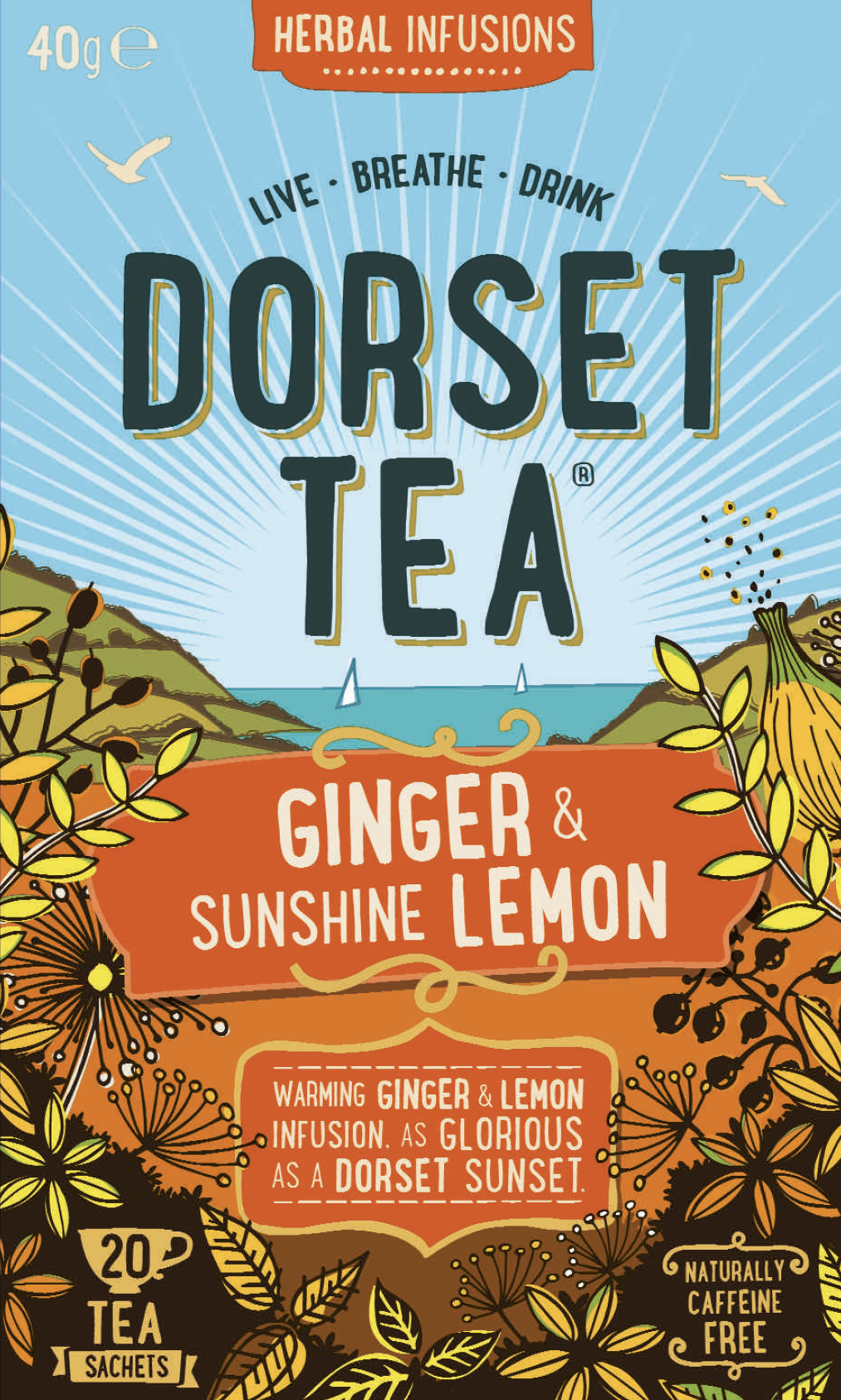 Ginger and Sunshine Lemon 20 Tea Bags