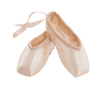 Energetiks Souvenir Pointe Shoes
