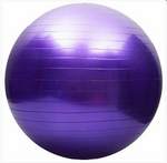 Mad Ally 65cm Exercise Ball
