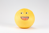 Grapefruit Plush Toy