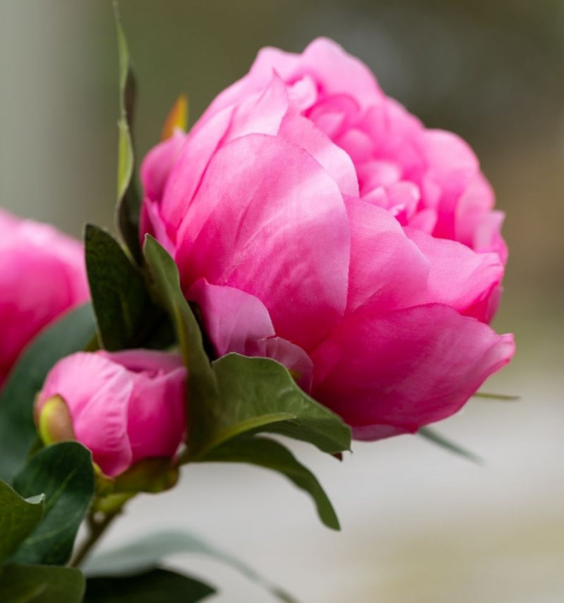 Faux Peony Pink