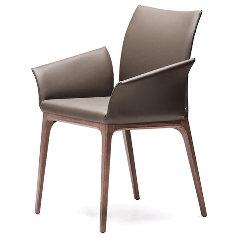 cattelan arcadia dining chair with arms