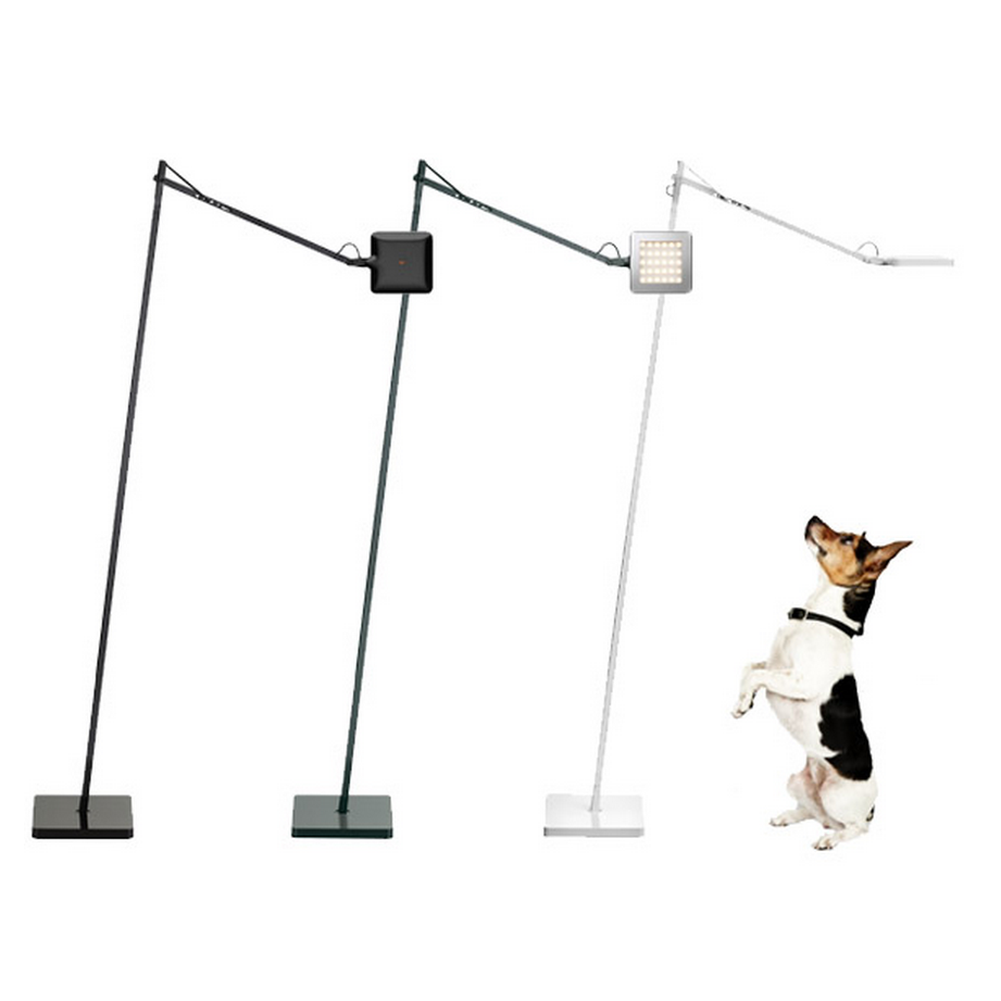 Flos Kelvin Led Floor Lamp: flos kelvin LED f floor lamp,Lighting