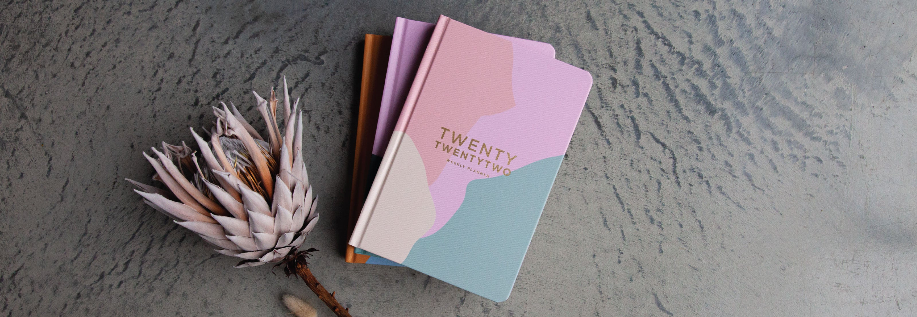 2019 Diaries & Planners 50% off