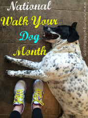 National Walk Your Dog Month