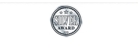 School Merit 599: Silver Award