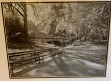 Load image into Gallery viewer, BLACK AND WHITE PARK BENCH LANDSCAPE SCENE