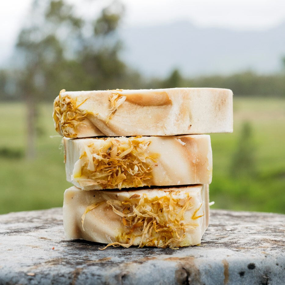 Carneys Creek Soap Bar