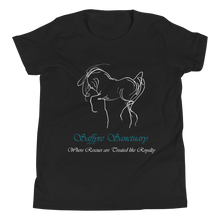 Load image into Gallery viewer, Saffyre Sanctuary Youth Short Sleeve T-Shirt