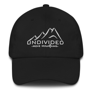 Undivided Baseball Hat