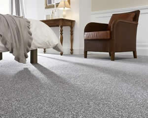 Carpet & Wood Flooring