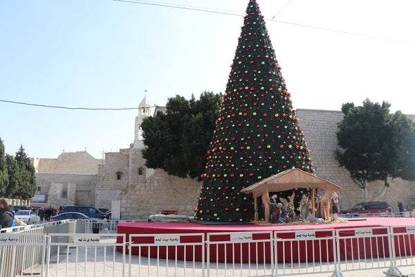 Christmas tree Nativity Church Bethlehem