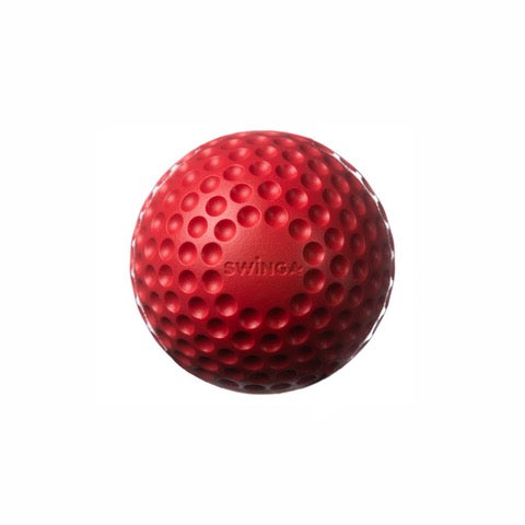 Swinga Technique Ball