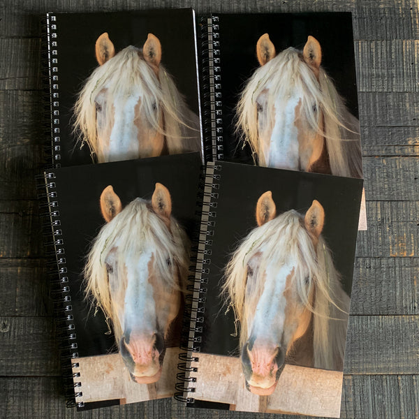 Care Free Horse Notebook