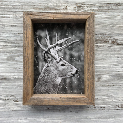 5x7 Deer Buck Photo Barn Wood Frame