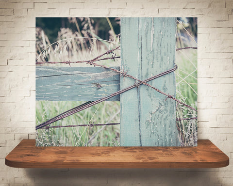 Barbed Wire Fence Photograph