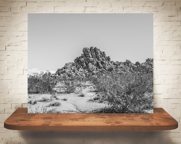 Desert Landscape Photograph Black White