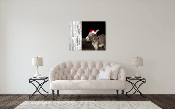 Donkey Christmas Photograph