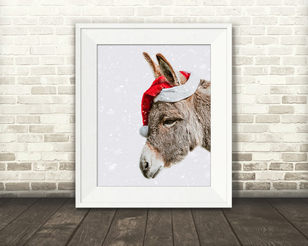 Donkey Christmas Photograph Snow