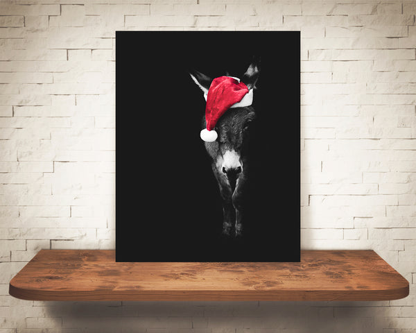Donkey Christmas Photograph Black White Red Hat