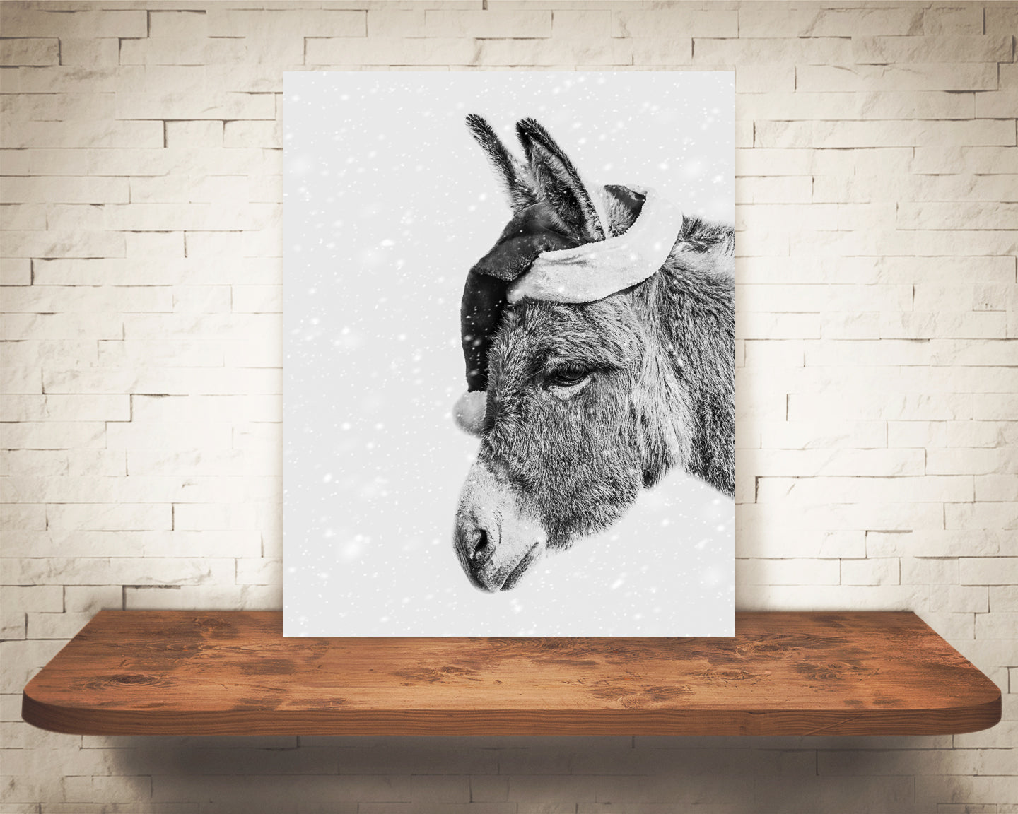 Donkey Christmas Photograph Black White Snow