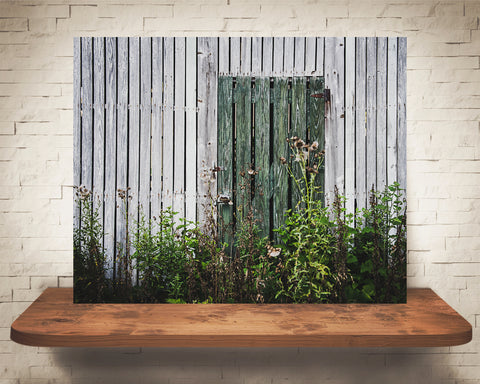 Green Barn Door Photograph