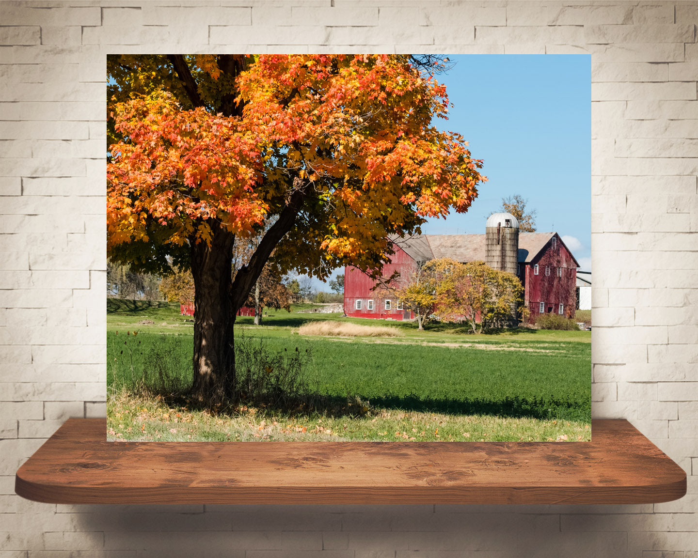 Red Barn Fall Photograph