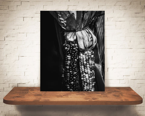 Fall Indian Corn Photograph Black White