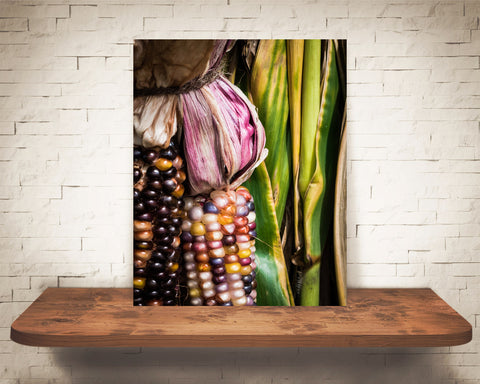 Fall Indian Corn Photograph