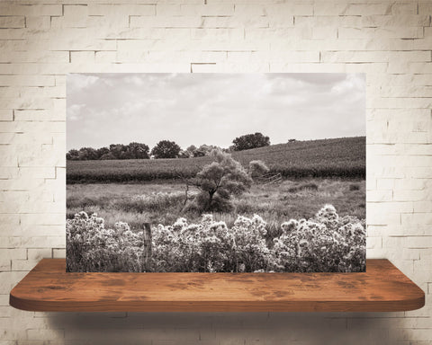 Country Landscape Photograph Sepia