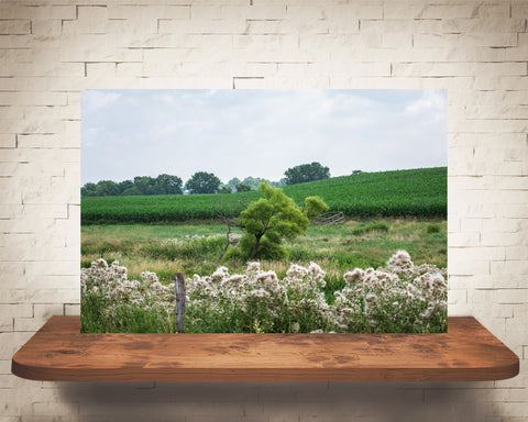 Country Landscape Photograph