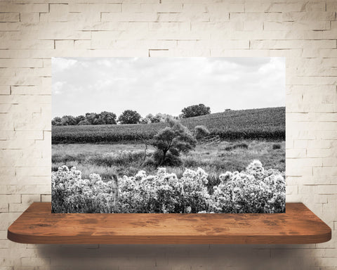 Country Landscape Photograph Black White
