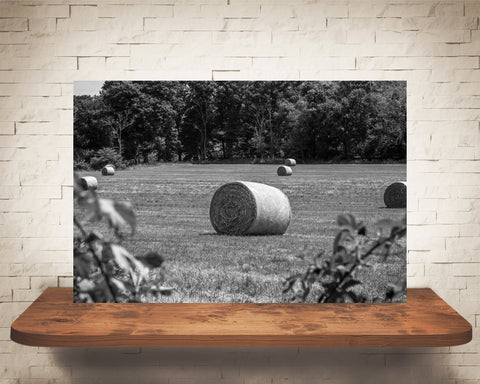 Country Hay Field Photograph Black White