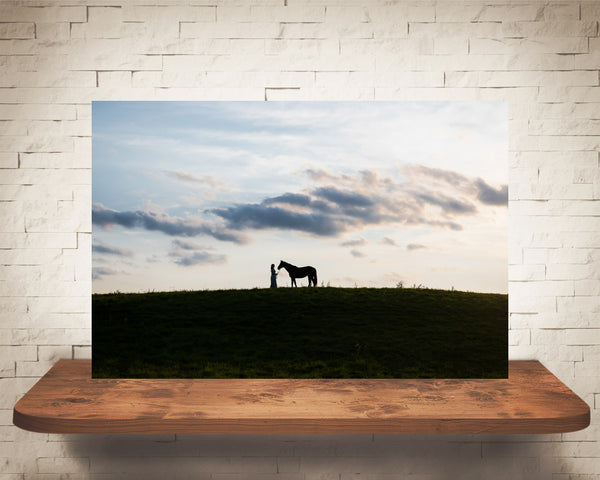 Horse and Girl Photograph