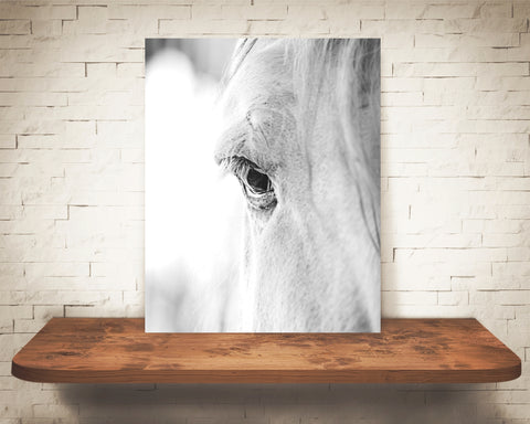 Retired - Horse Eye Photograph Black White