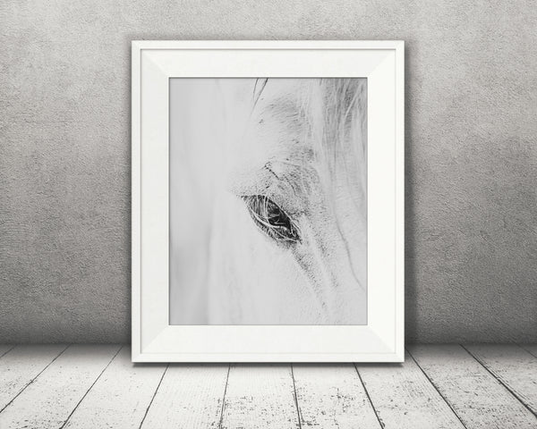 Horse Eye Photograph Black White