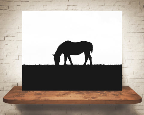 Horse Silhouette Photograph Black White