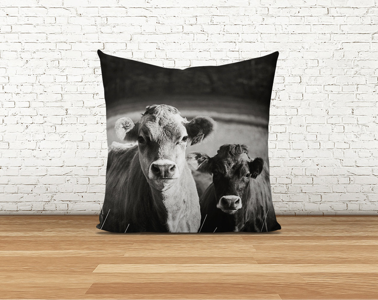 Jersey Cows Pillow Cover