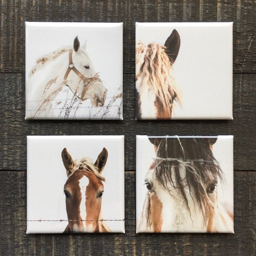 Set of 4 Horse Magnets