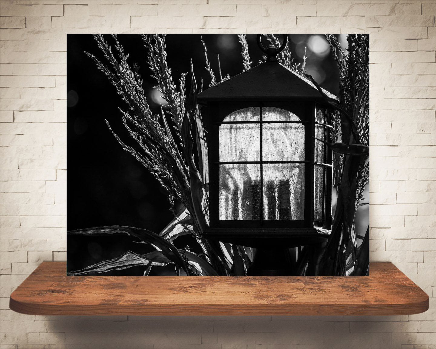 Fall Lantern Photograph Black White